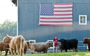 American flag on the barn at Mclaughlin Farm